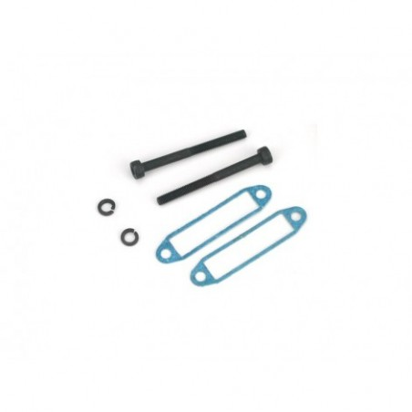 Muffler Screw with Gasket:...
