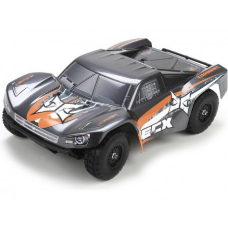 Torment SCT 1/18 4WD RTR