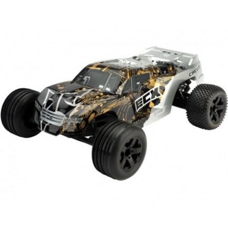 Circuit Stadium Truck 1/10...