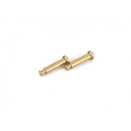 Hinge Pins 4x21mm TiN (2): 8B